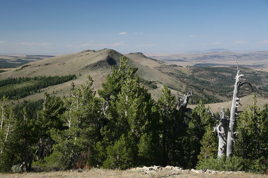 160 Acre- Just North of the Christmas Valley Sand Dunes!