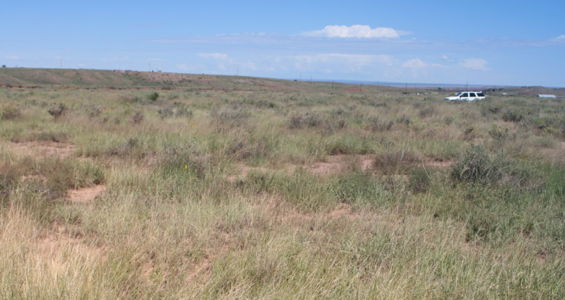 St Johns, Arizona, $1,000; 1.04 Acres