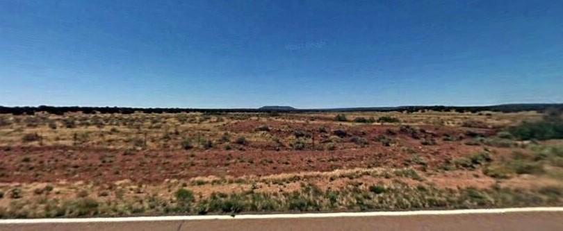 Concho, Arizona, $9,925, 20 Acres