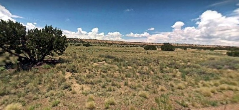 St. Johns, Arizona, $10,495, 20 Acres